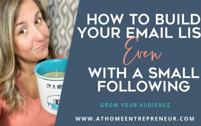 How To Build Your Email List Even With A Small Following
